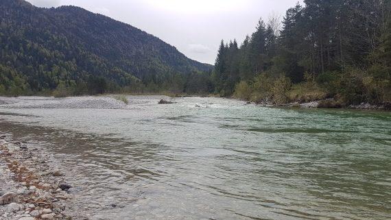 Als Angler sollte man nie das Wetter und die Pegelstände im Angelrevier unbeachtet lassen! Nutzen Sie die Möglichkeit, sich über eine Webcam einen zeitnahen Überblick über das Angelwetter vor Ort zu machen.